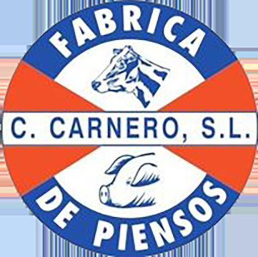 Cesar Carnero